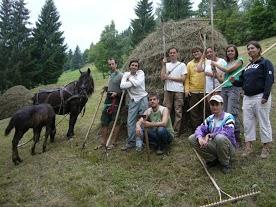Haymaking festival Gyimes