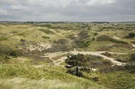 Zuidkennemerland NP 1