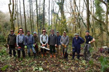 The EuCAN DMV team at Paccombe Woods tackling the rhododendron problem!