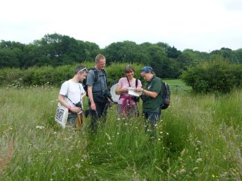 botany group 1