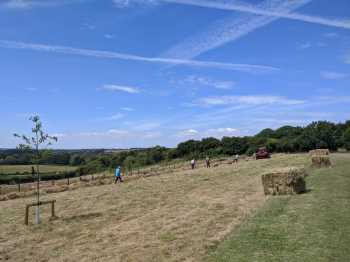 Haymaking on the Terraces 22.7.20 .2
